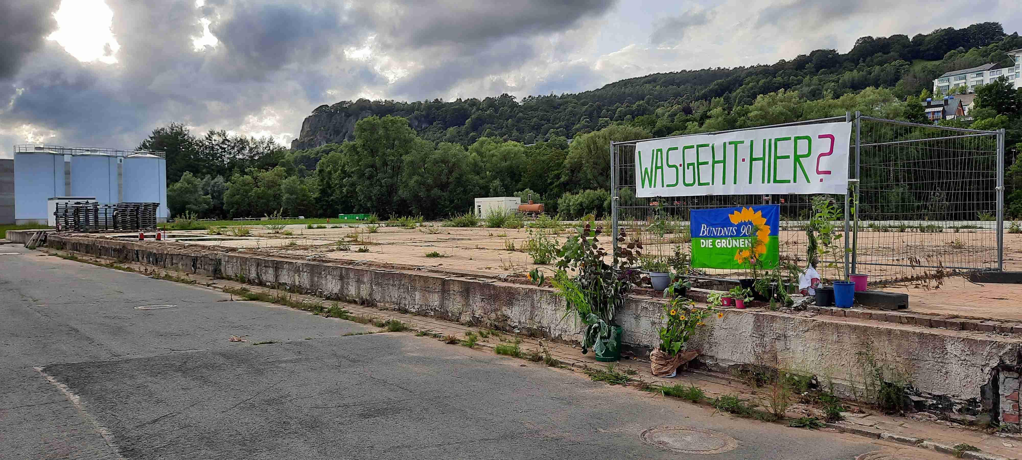 Symbolische Pflanzaktion auf dem ehemaligem Brunnengelände - Was geht hier?